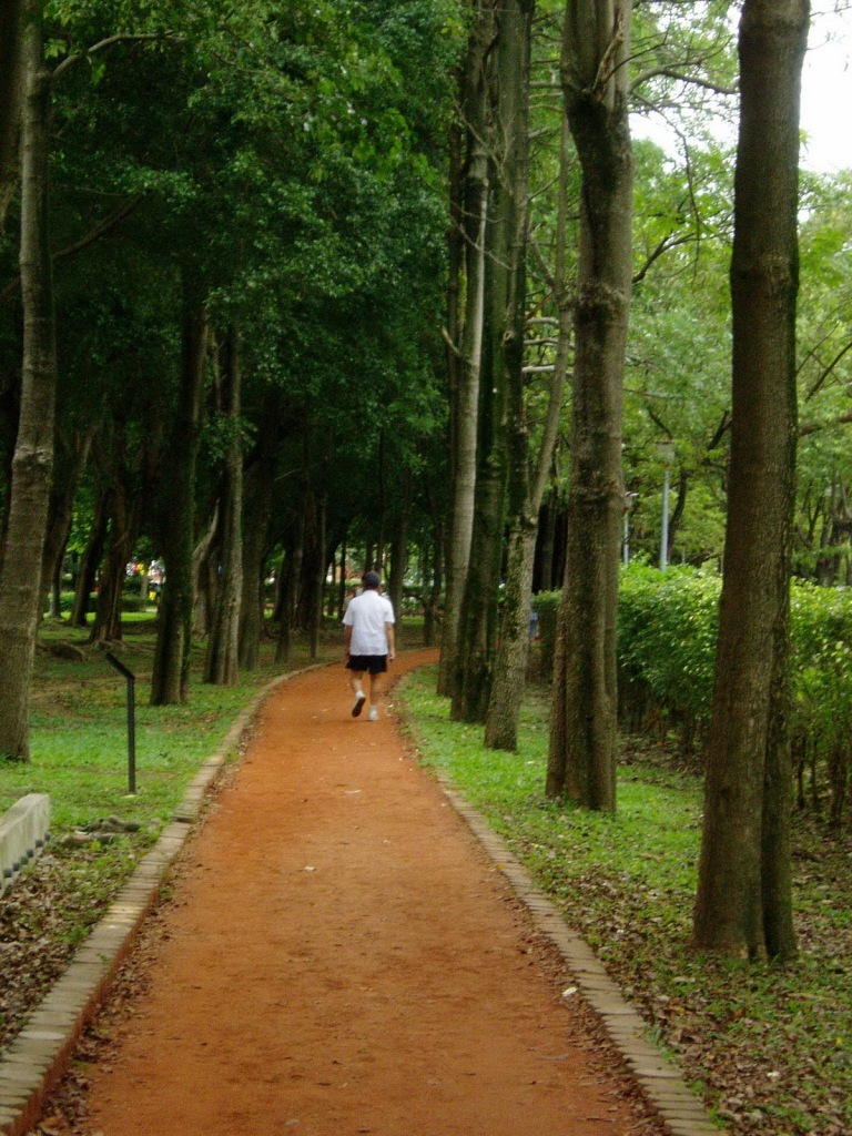 Inviting Trails in Da'an Park