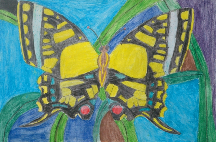 By Haley Barr, Grade 6, Johnson Middle School, McKinney ISD, Texas